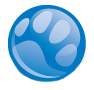 Blue Pearl specialty and emergency medicine for pets